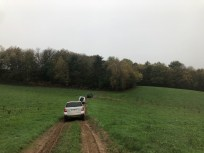 Limousin-2019-060