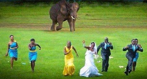 nunta-in-africa