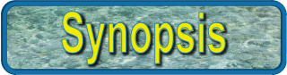 synopsis banner