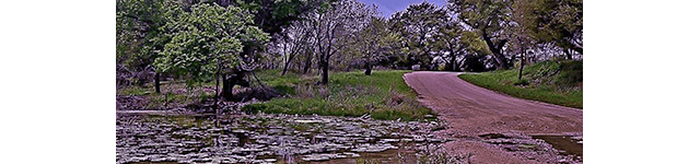 Low Water Crossing Cover: photo of dirt road with nearly dry creek bed crossing it. Text: Low Water Crossing - A Sulfur Gap Novel Book 2 - Dana Glossbrenner