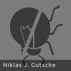 Niklas J. Gutsche