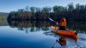 Hire a Kayak and explore the Clyde River