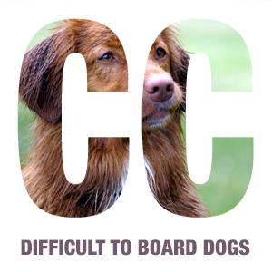 difficult-dog-square-cc-icons