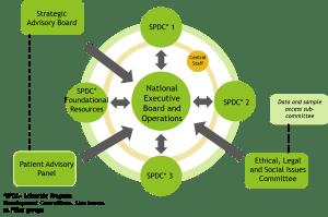 The Governance Model