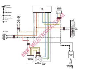 Suzuki Cdi Wiring Diagram  Wiring Diagram And Schematics