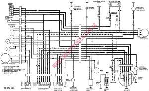 Yamaha Outboard Motor Parts Diagram  impremedia