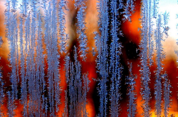 Fire and Ice - Macro on Glass