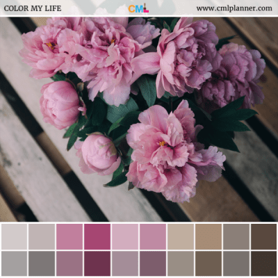 Pink Floral - Color Inspiration from Color My Life