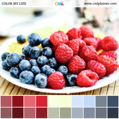 Very Berry - Color Inspiration from Color My Life