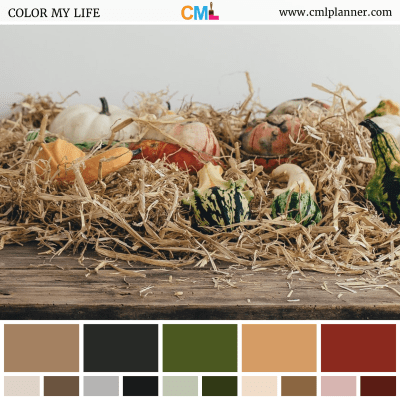 Autumn Bliss - Color Inspiration from Color My Life
