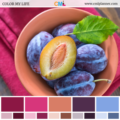 Color Palette #092018 - Color Inspiration from Color My Life