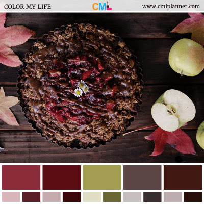 Color Palette #101718 - Color Inspiration from Color My Life