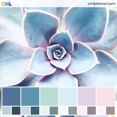 Color Palette #080120 - Color Inspiration from Color My Life. Visit cmlplanner.com/colors/080120 to view the color codes for each color and download the free Adobe (ASE) and Procreate .swatch files.