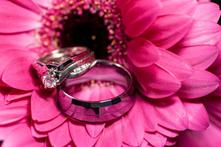 Wedding rings lovingly together in pink gerbera daisy