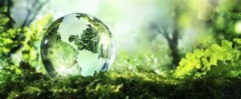全息生态意识引领生态实践 - 全息生态系列(三)