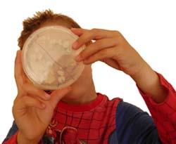 ¿Cuántas bacterias hay en tus manos?