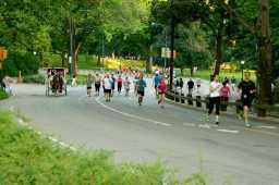 Central Park est le rendez-vous des joggeurs