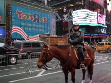 Sur Times Square, vous croiserez peut-être la police à cheval