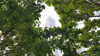 La One World Trade Center au milieu des arbres. (Photo Smain Stanley)