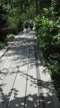A l'ombre des arbres. (Photo Auréliie Mathiis)