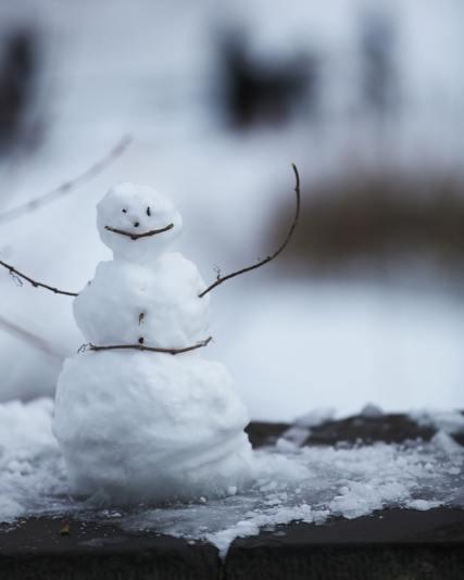Bonhomme de neige dans Central Park
