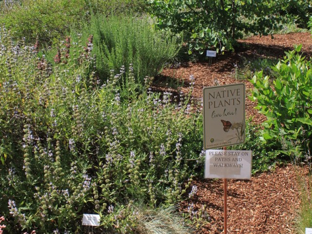 Garden tour. Credit Kathy Kramer.
