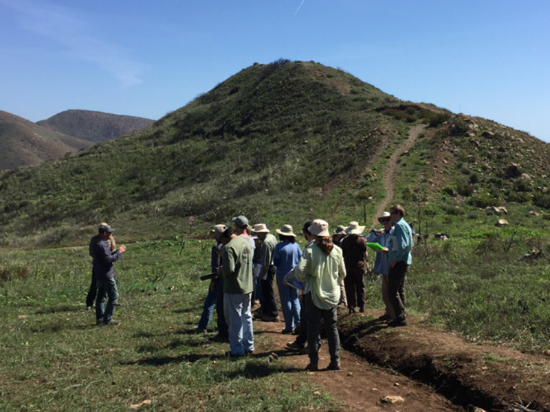 Rare plant survey protocols workshop, Point Mugu, 2016. Credit Becky Reilly.