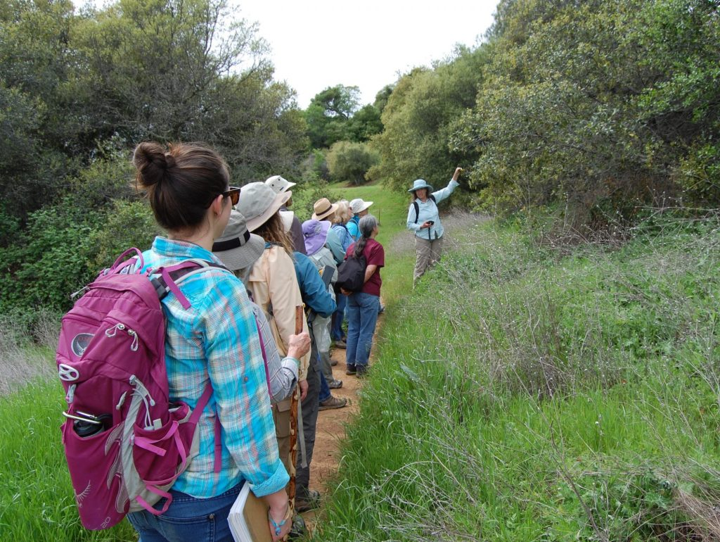 2017 Intro to Plant ID workshop, Auburn, CA. Credit Becky Reilly.