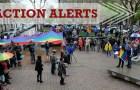 Action Alerts – Week of June 12