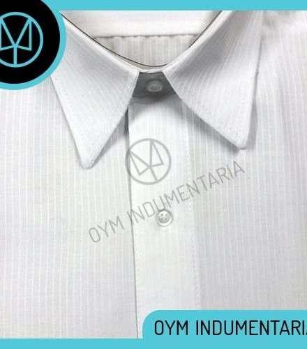 http://articulo.mercadolibre.com.ar/MLA-611167765-camisa-ratier-labrada-hombre-manga-larga-varios-colores-_JM