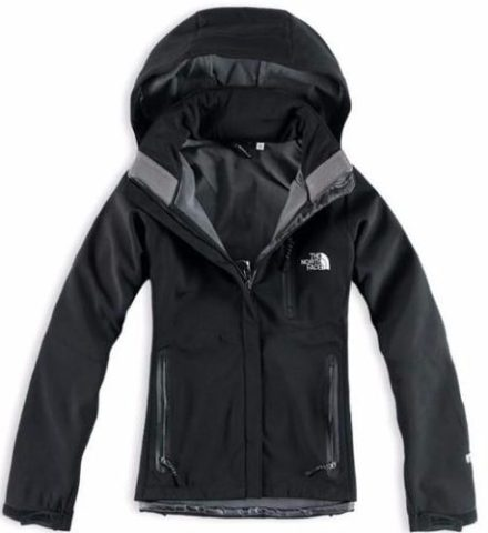 http://articulo.mercadolibre.com.ar/MLA-617943226-campera-softshell-the-north-face-cupon-_JM