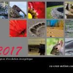 compagnon-energetique-201728