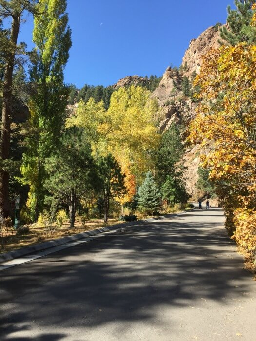 hiking view of trees - From Corporate Career to Financial Independence in His 50s
