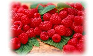 raspberry-sauce