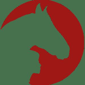 Coaching mit Pferden Harz - Mitarbeiten