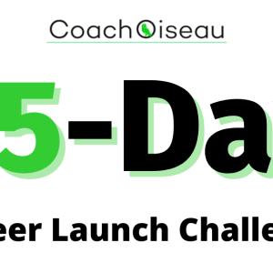15-Deay Career Launch Challenge
