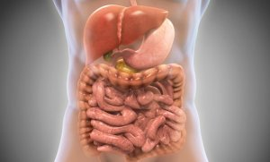 10 Ways to Improve Your Gut Bacteria, Based on Science