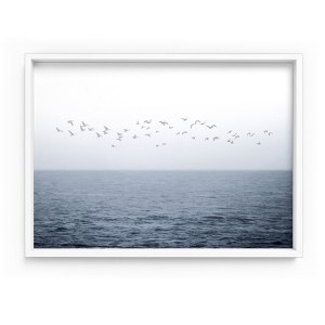 Birds on Ocean Horizon