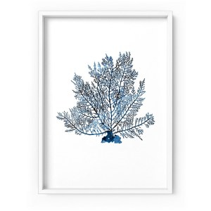 Hamptons Watercolour Coral