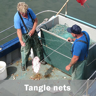 Fishing tangle nets
