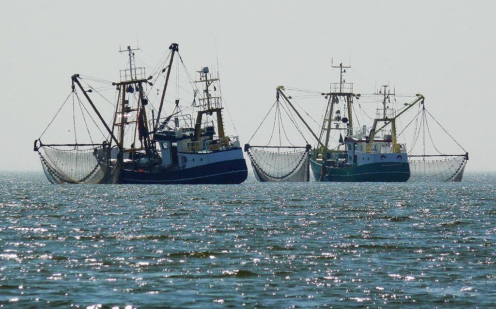 Trawl fishing net supplier