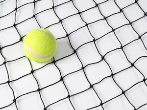 Cricket boundary net