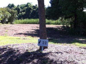 lot 22 with sign cleared