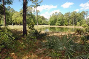 Lot 54 Lantana, water on TWO sides! $249,000