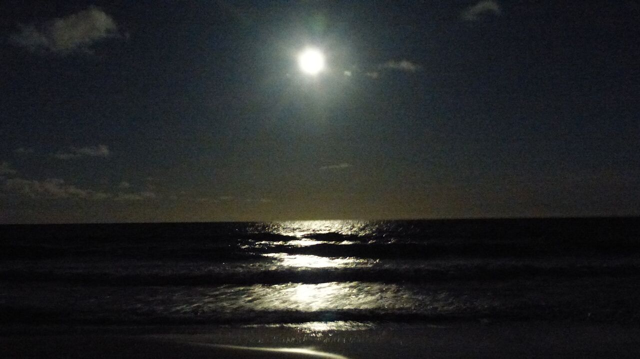Howl at the Moon on the DeBordieu Beach Club Deck!