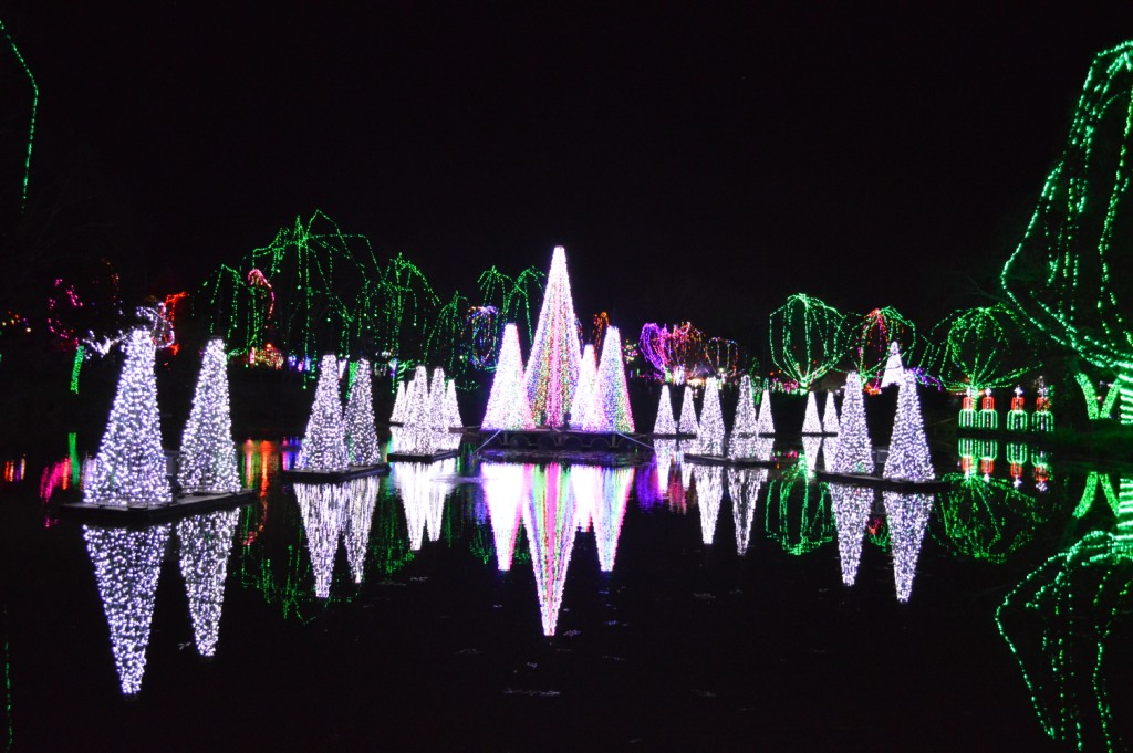 Columbus Zoo Light Show