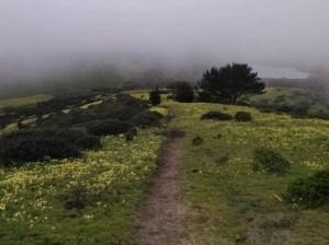 Trails Courtesy on the Coast @ Farallone Elementary School | Half Moon Bay | California | United States