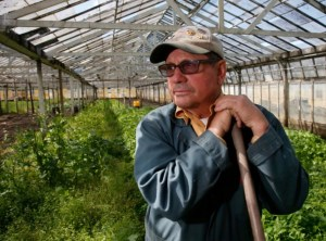 Want to Know More About Cannabis Starts? Ask Farmer John or Dustin Cline