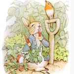 Bedtime Stories ~ The Tale of Peter Rabbit