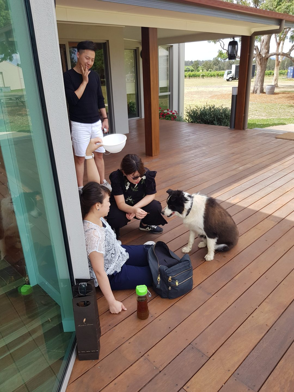 Hunter Valley Day Trip from Sydney